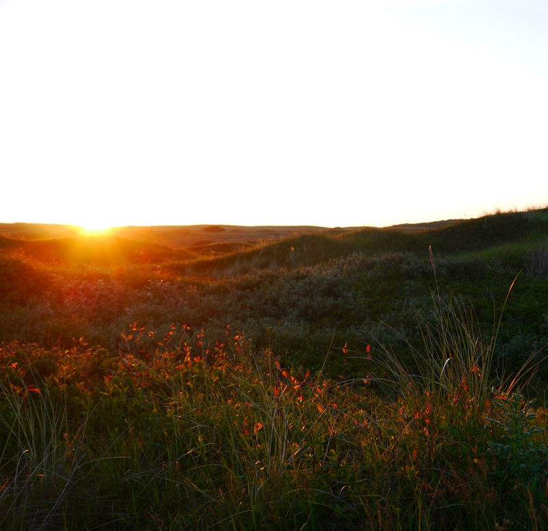 The sun sets behind the dunes on Texel