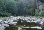 Thomais on the rocks of the river Murg, near Forbach