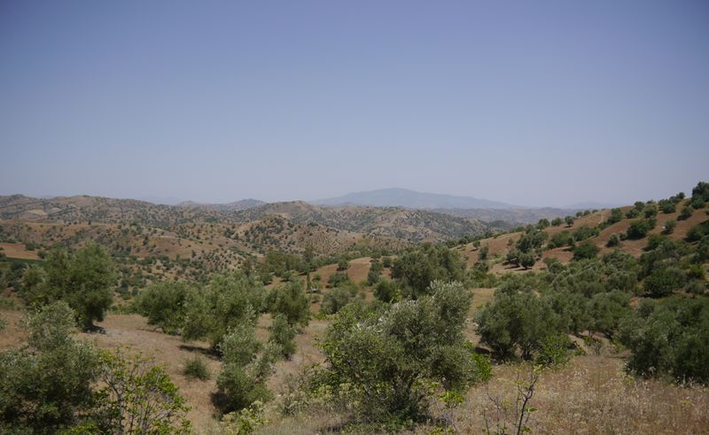 Arid land in the Rif Mountains