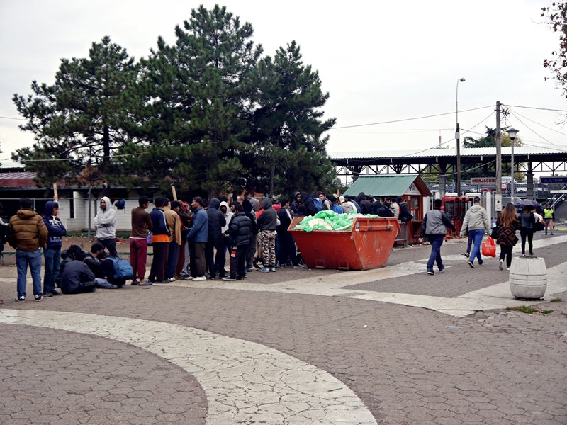 The queue for food at Belgrade refugee park