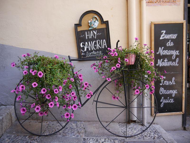 Bike and flowers Granada