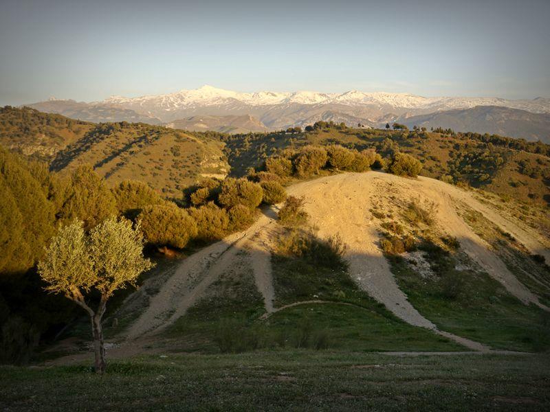 Sierra Nevada from San Miguel