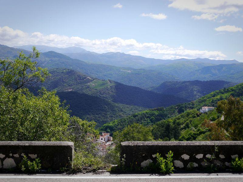 hills and trees around Ronda