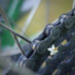flower on bicycle cogs