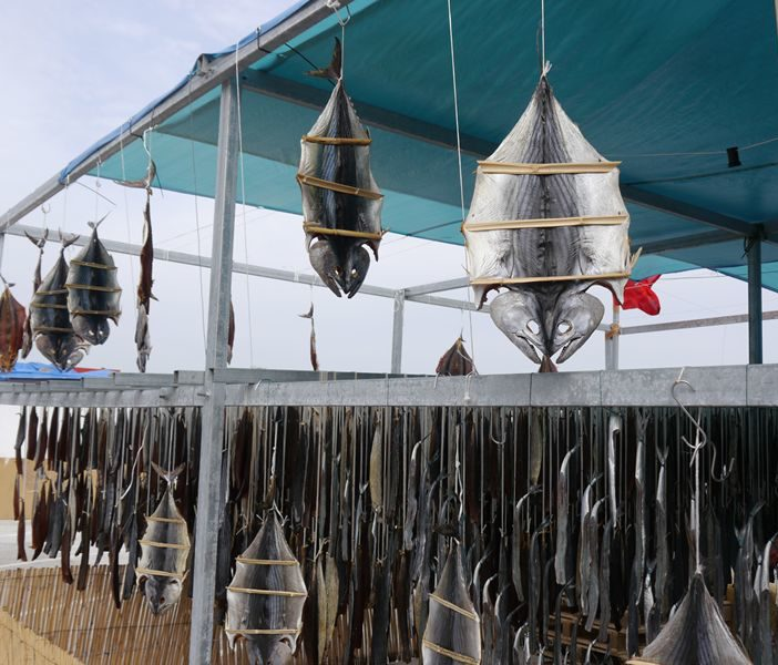 fish hanging in Ceuta