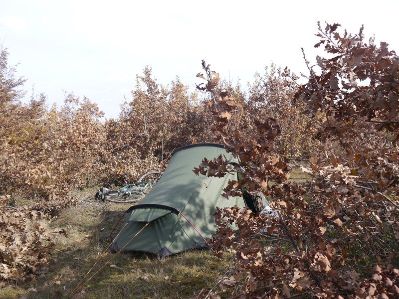 My tent hiding in some bushes