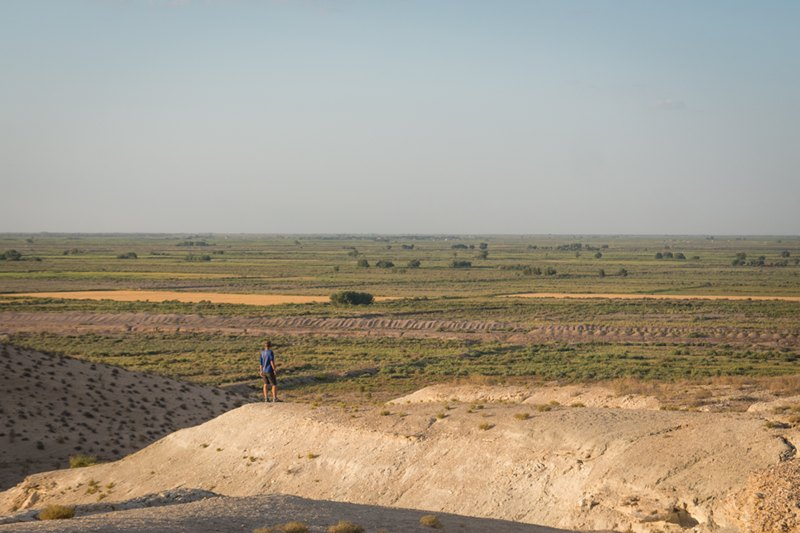 Fields in Uzbekistan